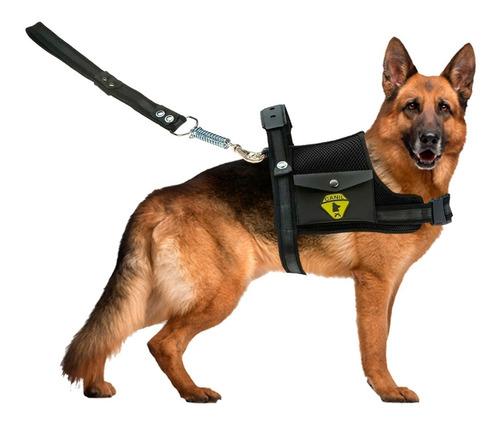 Peitoral Coleira Com Guia Cão Cachorro Com Regulagem