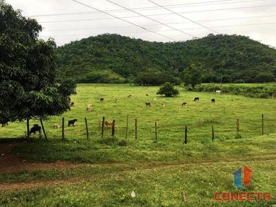 Fazenda Para Venda Em Santa Leopoldina, Centro, 4 Dormitórios, 3 Banheiros - 101099