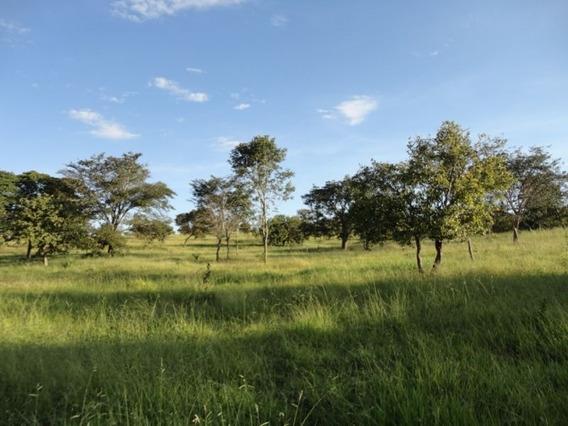 Fazenda Com 2 Quartos Para Comprar No Zona Rural Em Baldim/mg - 3296