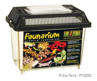 Faunarium Mini Exo Terra Mascotas
