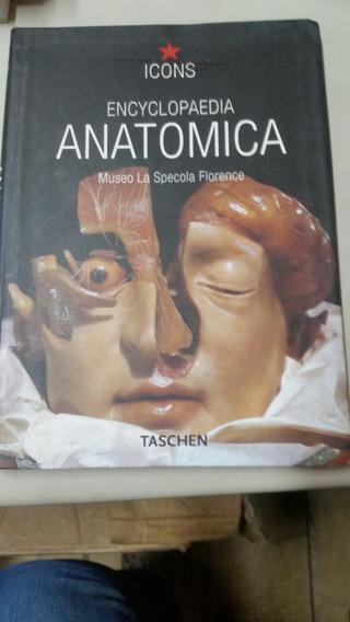 Encyclopaedia Anatomica - Museo La Specola Florence