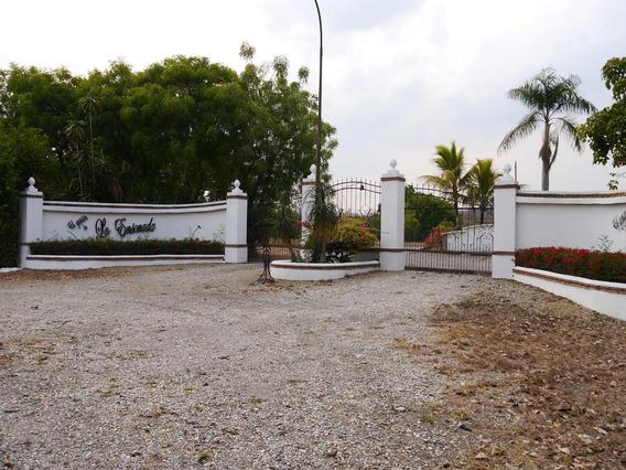 Terreno Hacienda En Venta En Barquisimeto