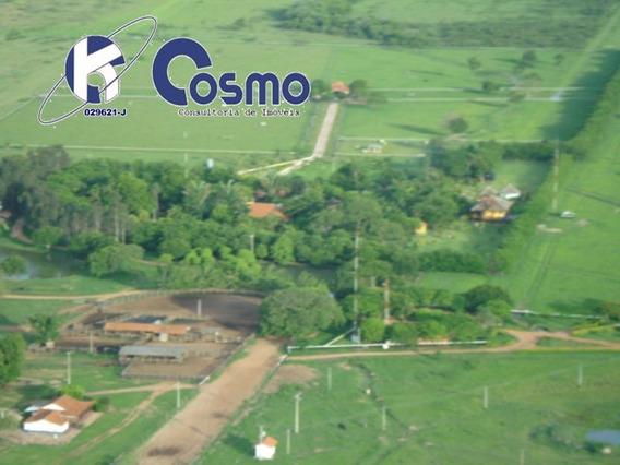 Fazenda, A Venda, Em Itiquira - Mt Dupla Aptidão - Fa00075 - 33572820