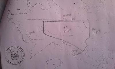 Terreno 31 Hectáreas Bagua Grande