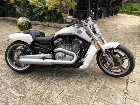 Harley Davidson V-rod Branca C/ Assessorios