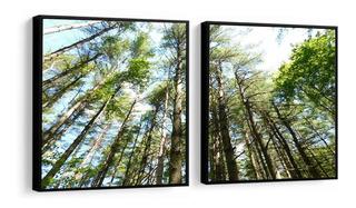 Quadro Decorativo Paisagem Floresta Verde Árvores Sala Peças