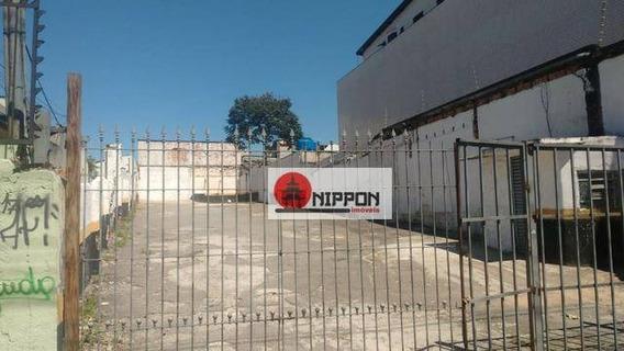 Terreno Comercial Para Locação, Centro, Guarulhos. - Te0016