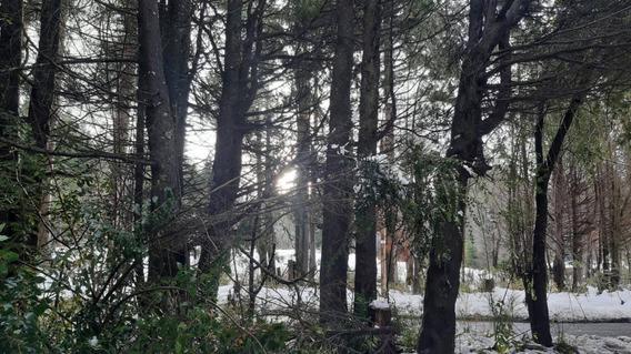 Lote Zona Kilómetros En Bariloche Sobre Bustillo