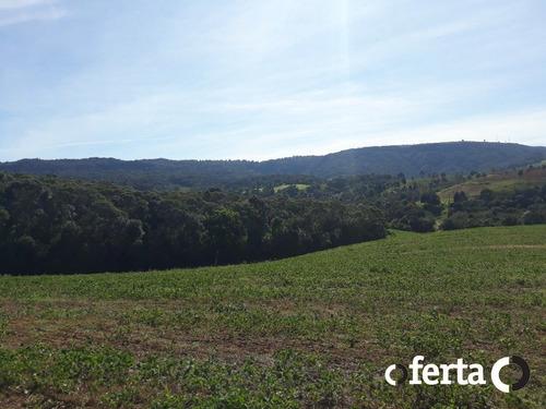 Imagem 1 de 15 de Chacara - Bugre - Ref: 773 - V-773
