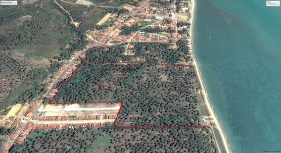 Terreno / Área Para Comprar No Praia Do Patacho Em Porto De Pedras/al - 1110