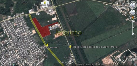 Terreno Em Pelotas 3,5 Hectares Junto A Br 116 - 20