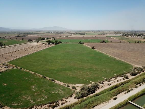 Terreno Agrícola En Venta - Colonia La Ahumadita, Mexicali
