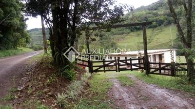 Chacara/fazenda/sitio - Centro - Ref: 238103 - V-238103