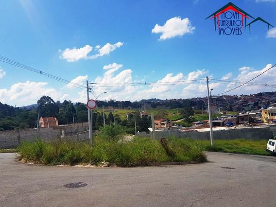Terrenos À Venda Em Guarulhos - Te00041