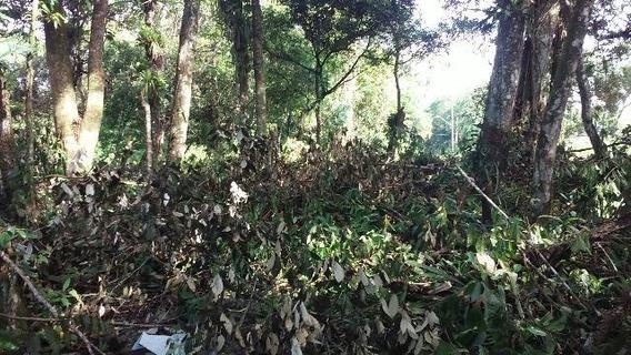 Terreno No Valor De R$ 25 Mil, Em Itanhaém