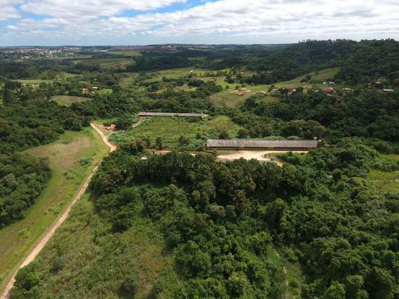 Fazenda Com 16,5 Alqueires Sendo 3,5 De Lago E Mata Nativa.