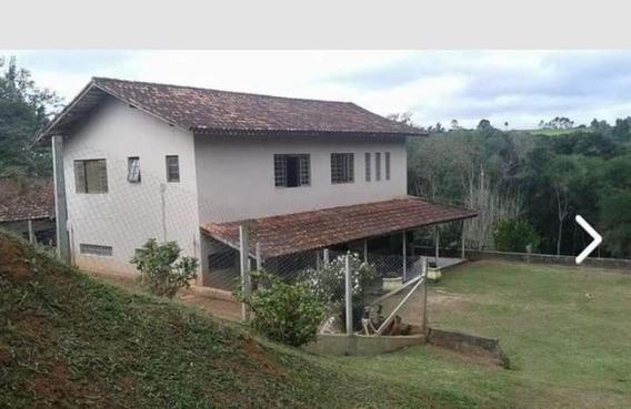 Chácara Ibiúna 5.000 M 3 Casas, Salão, 21 Baias P/ Cachorro