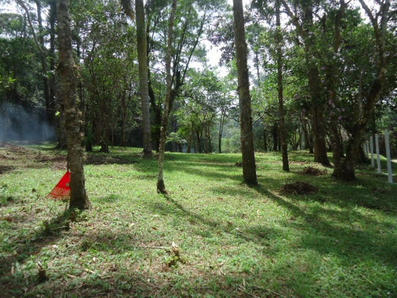Direto Proprietário Negociar Terreno Morar Ou Lazer Ref 1141