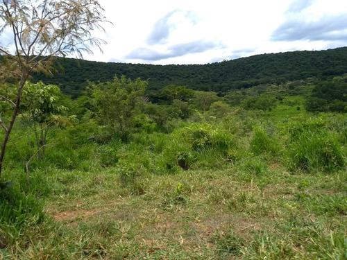Fazenda A Venda Em Buenópolis - Mg - Bcp116