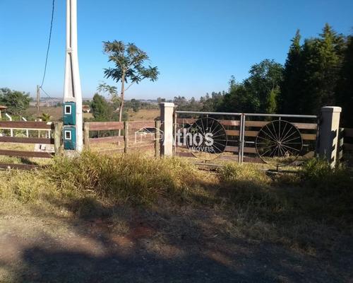 Imagem 1 de 12 de Vendo Sitio Em Elias Fausto - St00031 - 69569371