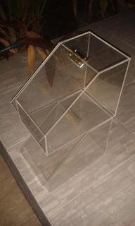 Frutos Secos Acrílico Transparente Dicographic 3mm Exfs-001