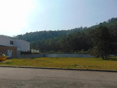 Terreno Em Alphaville, Barueri/sp De 0m² À Venda Por R$ 1.800.000,00 - Te184651