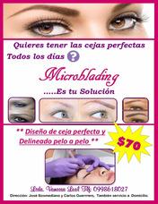 Microblading, Cejas 3d, Cejas Pelo A Pelo Serv. A Domicilio