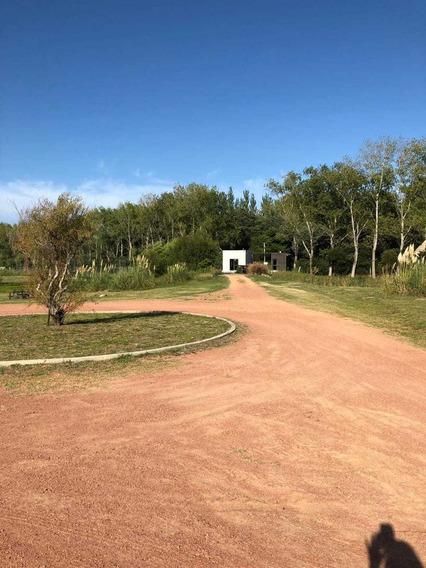 Punta Ballena - Uruguay. Lote En Barrio Verdemora, 1100 Mt2