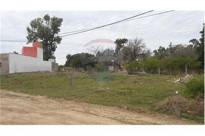 Terreno En Venta San Jose Del Rincón Altura 7km R1