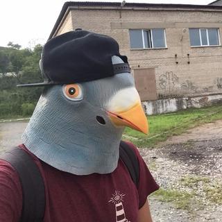 Máscara De Pombo Pássaro Cabeça Látex Pomba Realista Latex