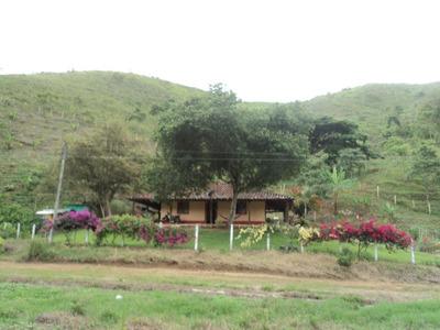 Finca En Venta Tulua Valle