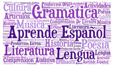 Private Spanish Lessons At Home