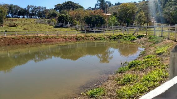 Sitio Em Caxambu , Circuíto Das Águas , Com 60.000 M2, Muita Água , Lago Para Peixe ,casa Boa Com 03 Quartos , 15 Klm Do Centro De Caxambu. - 325