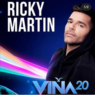 Entrada Festival Viña Ricky Martin