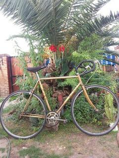 Bicicleta De Carrera Olmo Rodado 28