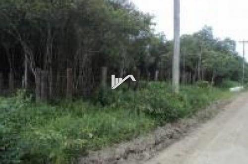 Imagem 1 de 13 de Terreno Para Chácara Com 7000 M² A 4km Do Rodovia