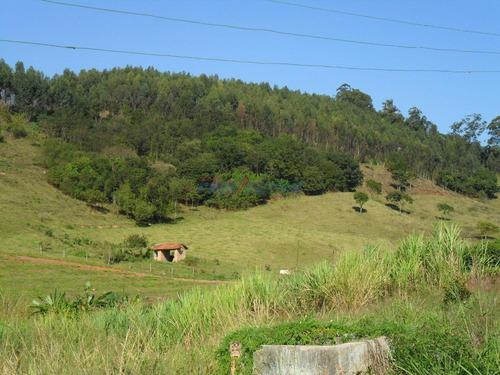 Terreno À Venda Em Macuco - Te273984