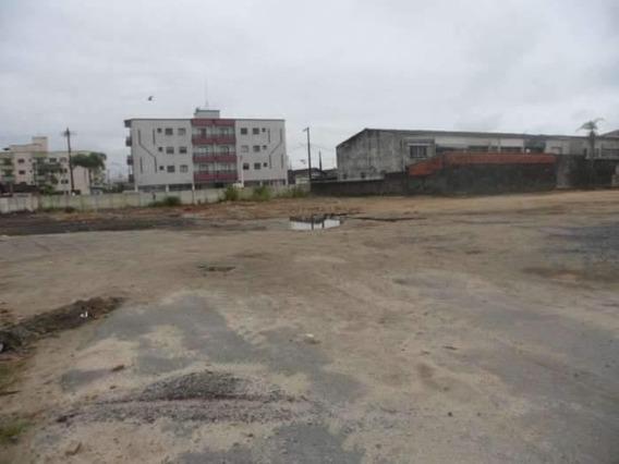 Terreno Em Solemar, Praia Grande/sp De 0m² Para Locação R$ 8.000,00/mes - Te362388