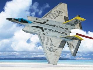 Cometa Volantin Avion Combate F-35 Marca Sky Dog
