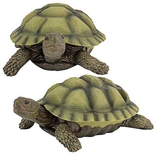 Diseño Toscano Gilbert The Box Turtle Garden Decor Animal S