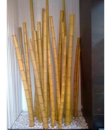 Bambu Para Uso Estructural Y Artesanal 10 Cortes De 1 M