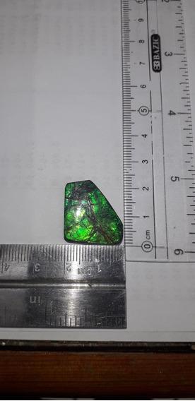 Piedra Ammolita 13ct. 100% Natural Origen De Canada Ammolite