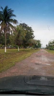 Fazenda A Venda Em Santa Rita Do Trivelat0-mt(dupla Aptidão) - 1062