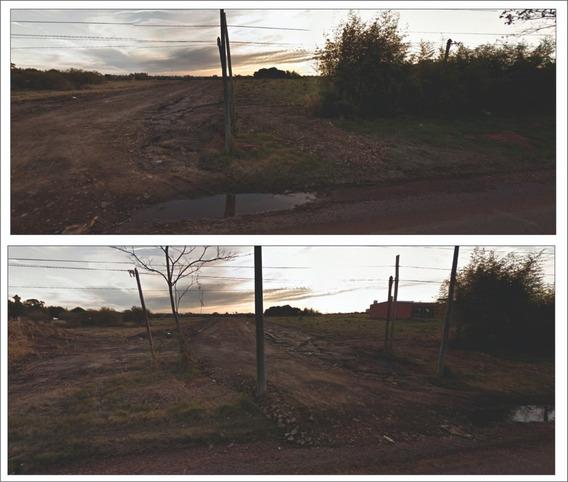 Terreno/s Silvestre Blanco Prox A Av. Rodo Zona Expansiòn