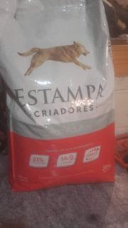 Vendo Comida Y Accesorios Para Perros Y Gatos