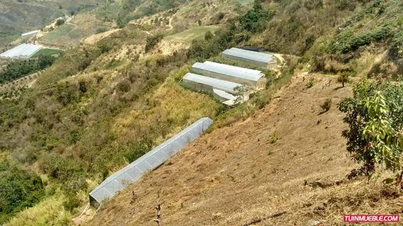 Haciendas - Fincas En Venta El Jarillo 04143446867