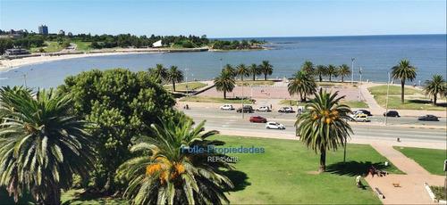 Parque Rodo Alquiler Oficinas Premium
