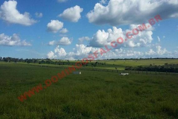 Venda - Fazenda - Zona Rural - Linhares - Es - D9911