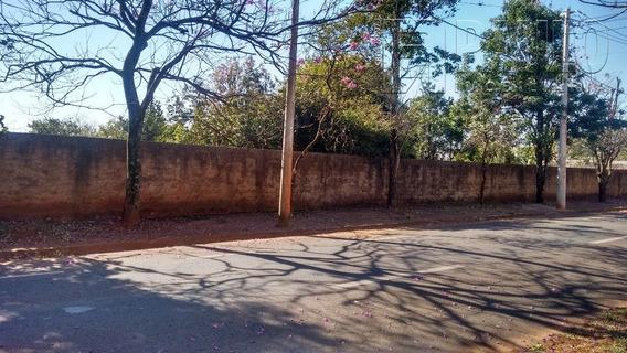Chacara / Sitios / Fazenda - Santa Rita - Ref: 11396 - V-11396