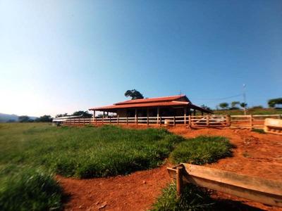 Sítio Com 2 Quartos Para Comprar No Zona Rural Em Nepomuceno/mg - Nep971